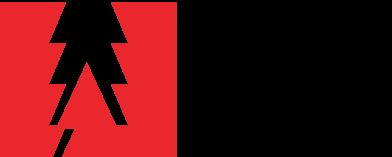 Adobe IN Logo